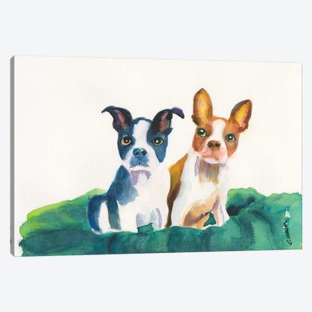 Let's Sit Together Canvas Print #CCM31} by Connie Collum Art Print