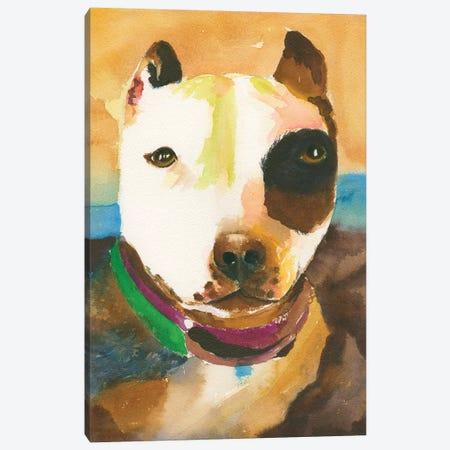 Pit Bull No. 1 Canvas Print #CCM46} by Connie Collum Canvas Print