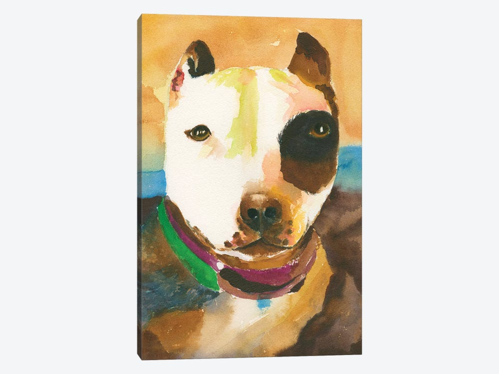 Pit Bull No. 1 by Connie Collum 1-piece Canvas Art