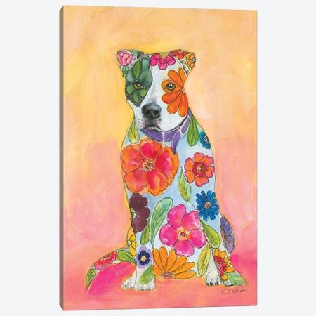 Pit Bulls Are Love Canvas Print #CCM48} by Connie Collum Canvas Art