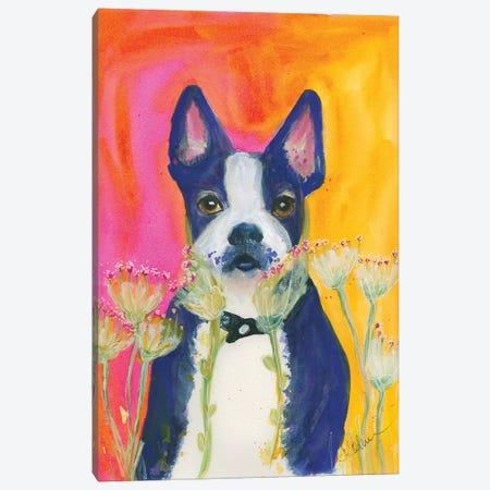 Sunset Boston Canvas Print #CCM60} by Connie Collum Canvas Wall Art
