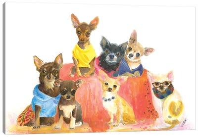 Chihuahuas Have My Heart Canvas Art Print