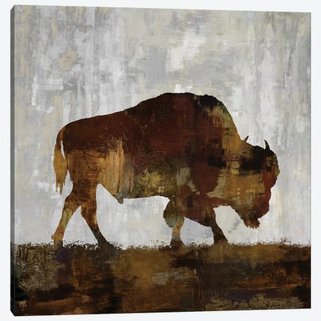 Bison Canvas Print #CCO2} by Carl Colburn Art Print