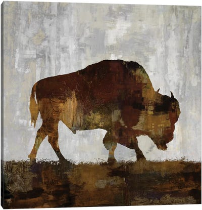 Bison Canvas Print #CCO2