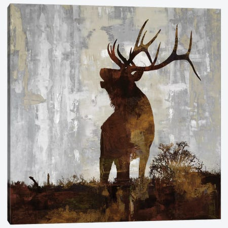 Elk Canvas Print #CCO3} by Carl Colburn Art Print