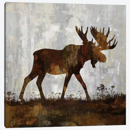 Moose Canvas Print #CCO4} by Carl Colburn Canvas Wall Art