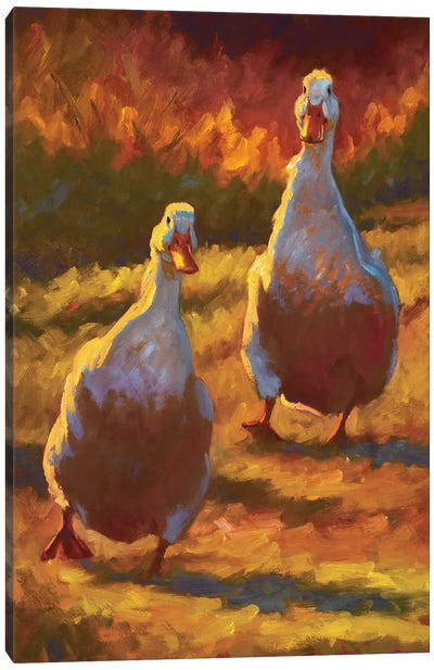 Waddling In Canvas Art Print