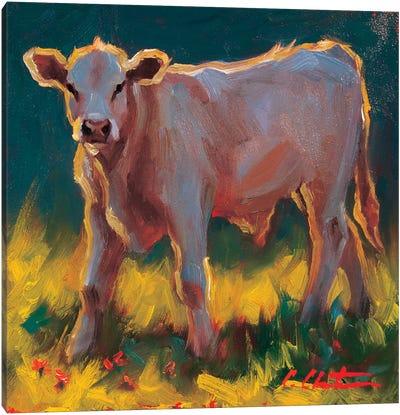 Calfinthegrass Canvas Art Print