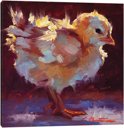Chick-Lit Canvas Art Print