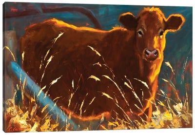 Infield Canvas Art Print