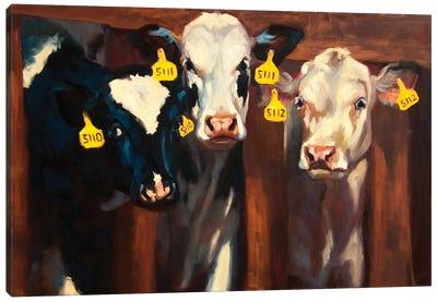 Milk Maidens Canvas Art Print