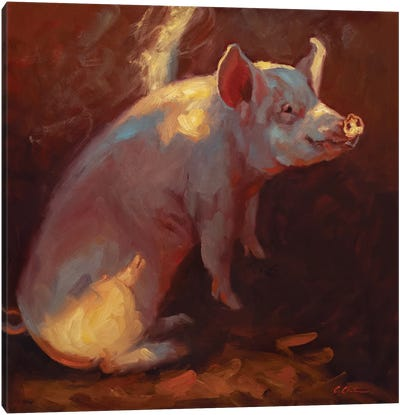 Some Pig Canvas Art Print