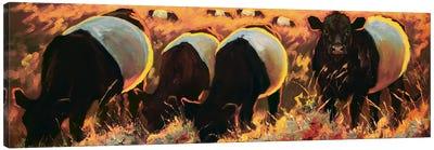 Vineyard Oreos Canvas Art Print