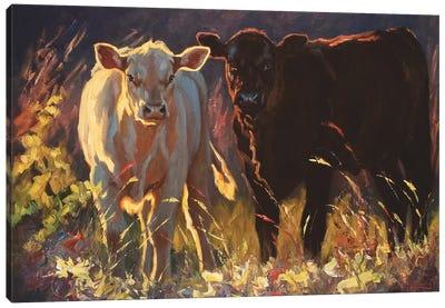 Hangin' In Fredericksburg Canvas Art Print