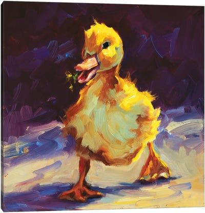 Fuzzy Duckling Canvas Art Print