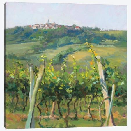 Flauvigny View Canvas Print #CDB1} by Christine Debrosky Canvas Art Print