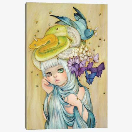 Diana Dreamcatcher Canvas Print #CDE42} by Camilla d'Errico Art Print