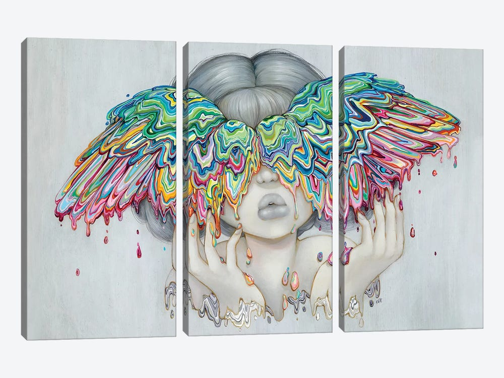 Icarus by Camilla d'Errico 3-piece Canvas Print