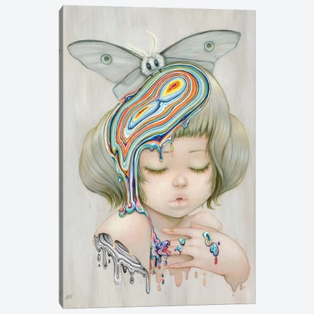 Farlena Canvas Print #CDE51} by Camilla d'Errico Canvas Artwork