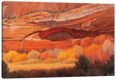 Eye On Autumn Canvas Art Print
