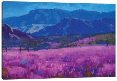 Levender Carpet Canvas Art Print