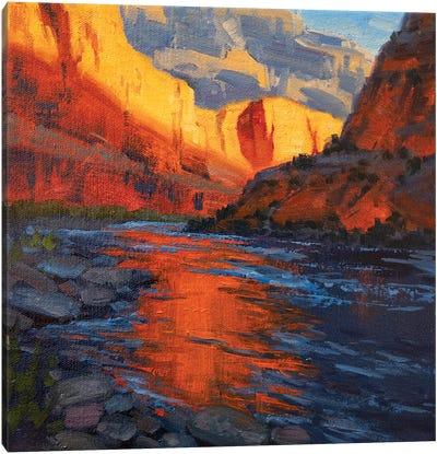 Reflectivity Canvas Art Print
