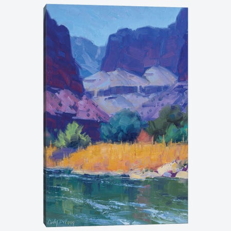 Cool Light In The Canyon Canvas Print #CDG7} by Cody DeLong Canvas Art Print