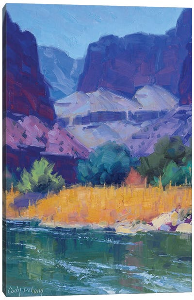 Cool Light In The Canyon Canvas Art Print
