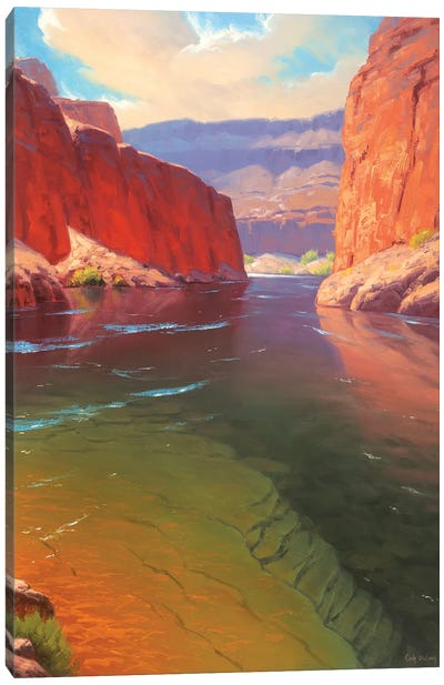 Depths Of The Canyon Canvas Art Print
