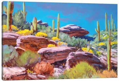 Desert Bloom Canvas Art Print