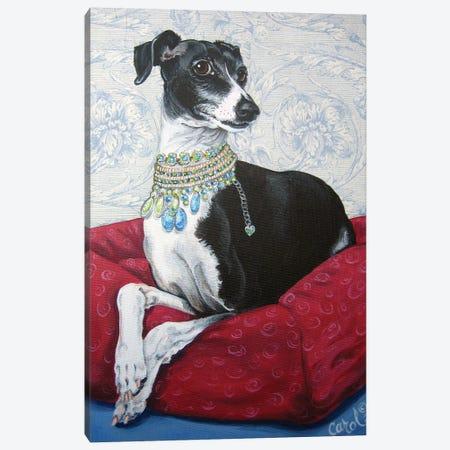 Italian Greyhound on Red Canvas Print #CDL10} by Carol Dillon Canvas Art Print