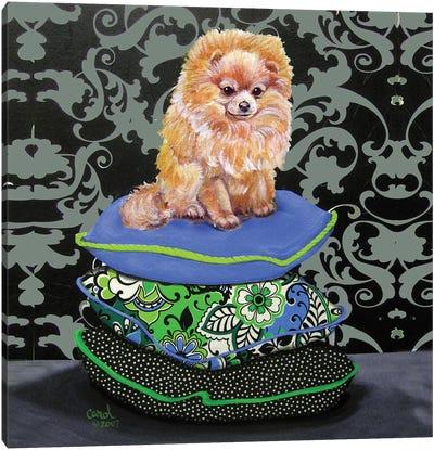 Pomeranian Pillows Canvas Art Print
