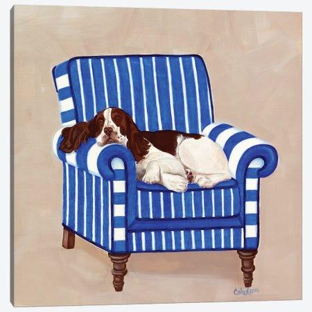 Springer on Blue Canvas Print #CDL16} by Carol Dillon Canvas Artwork