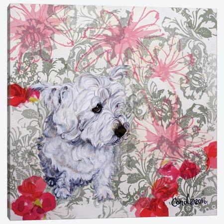 Playful Pup III Canvas Print #CDL20} by Carol Dillon Canvas Artwork