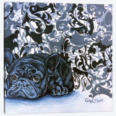 Playful Pup V Canvas Print #CDL23} by Carol Dillon Canvas Wall Art
