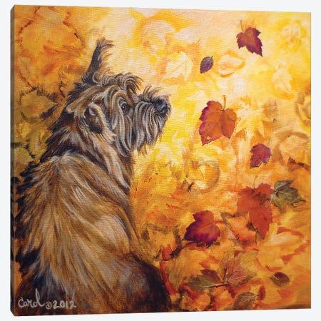 Playful Pup VIII Canvas Print #CDL26} by Carol Dillon Canvas Print