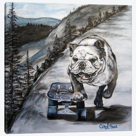 Playful Pup XI Canvas Print #CDL28} by Carol Dillon Canvas Art