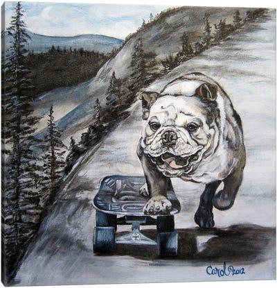 Playful Pup XI Canvas Art Print