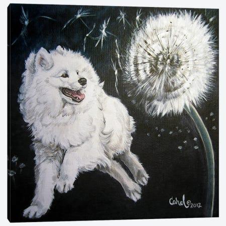Playful Pup XII Canvas Print #CDL29} by Carol Dillon Canvas Wall Art