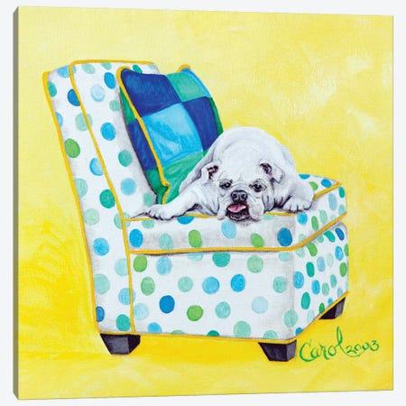 Bulldog on Polka Dots Canvas Print #CDL2} by Carol Dillon Canvas Print