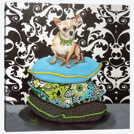 Chihuahua Pillows I Canvas Print #CDL4} by Carol Dillon Canvas Art