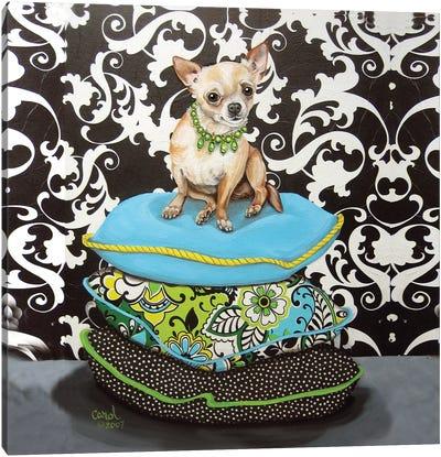 Chihuahua Pillows I Canvas Art Print