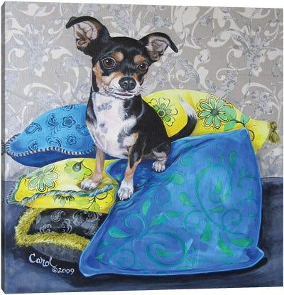 Chihuahua Pillows II Canvas Art Print