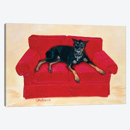 Dobie on Red Canvas Print #CDL7} by Carol Dillon Canvas Wall Art