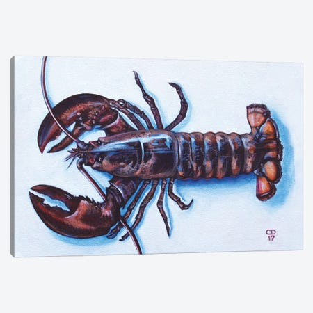Larry The Lobster Canvas Print #CDO16} by Cyndi Dodes Canvas Print