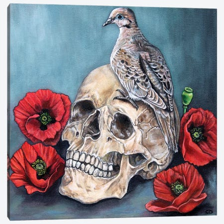 Skull With Dove And Poppies Canvas Print #CDO25} by Cyndi Dodes Canvas Wall Art
