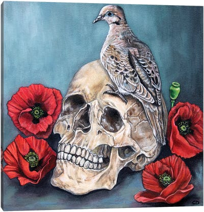 Skull With Dove And Poppies Canvas Art Print