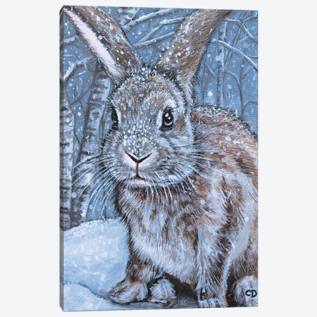Winter Rabbit Canvas Print #CDO33} by Cyndi Dodes Canvas Artwork