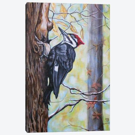 Woody Canvas Print #CDO34} by Cyndi Dodes Canvas Art Print
