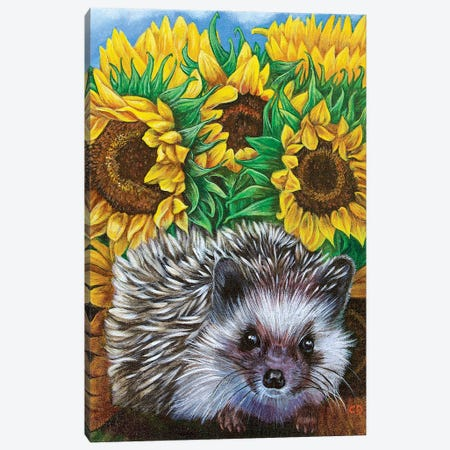 Hedgehog With Sundlowers Canvas Print #CDO43} by Cyndi Dodes Canvas Art Print